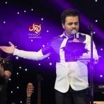 کنسرت میثم ابراهیمی - خرداد 95