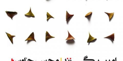 محسن چاوشی - امیر بی گزند
