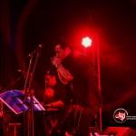 کنسرت علی معتمدی (11)
