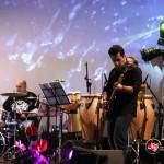کنسرت علی معتمدی (21)